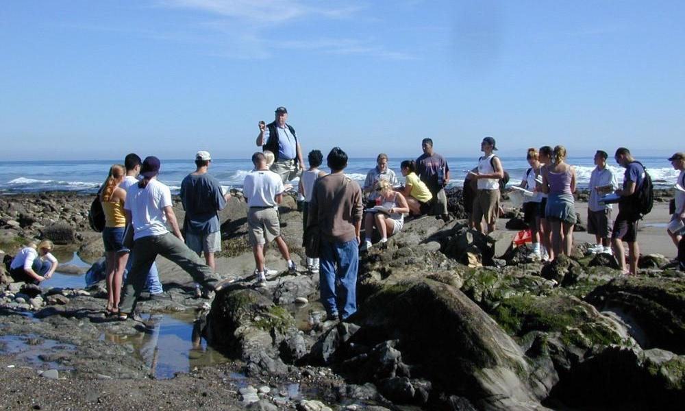 City College intertidal class