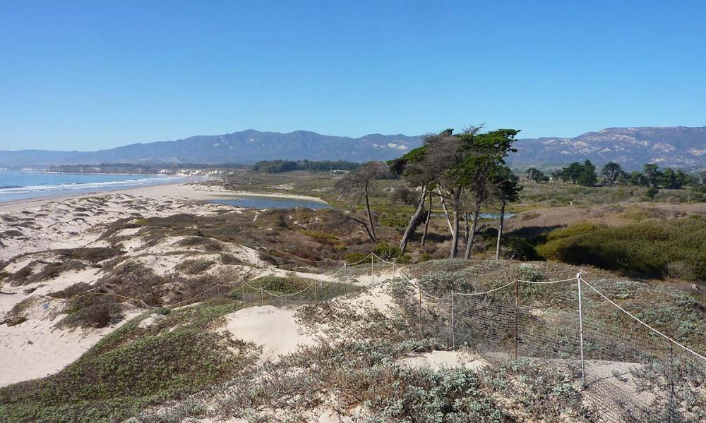 Coal Oil Point dunes and waves